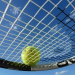 tennis, tennis ball, tennis racket